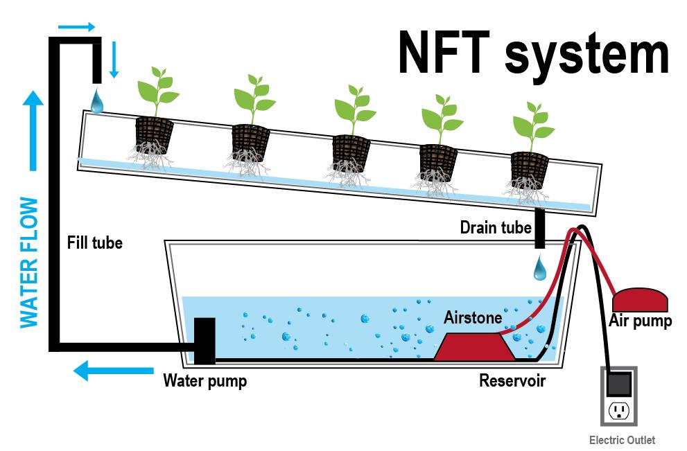 Hidroponik NFT (Nutrient Film Technique)