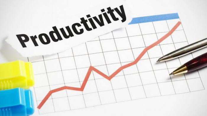 Produktivitas Karyawan