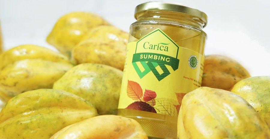 camilan manisan buah